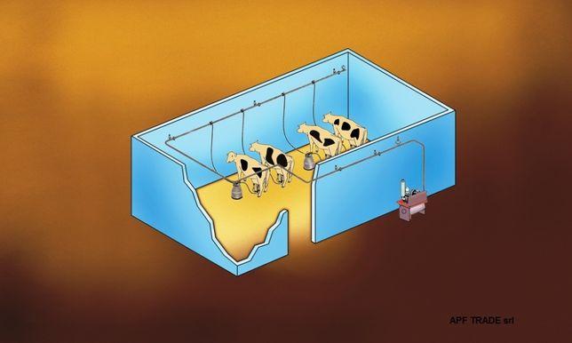 Instalatie de muls la bidon - vaci - oi - capre - bivolite, Sezer
