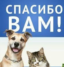 Ветеринар, выезд.