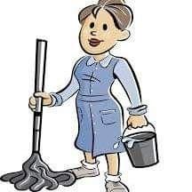 Doamnă serioasă fac curatenie la apartamente case după zugrăvit etc !