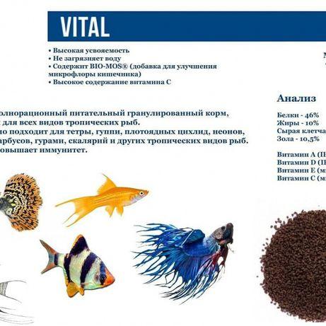 Корм для рыбок. VITAL , SCARLET