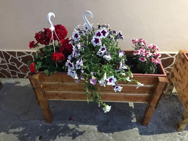 Ghiveci flori gradina