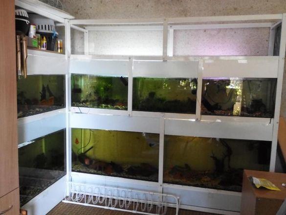 Стойки за аквариуми