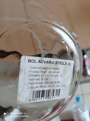 Bol sticla pești betta