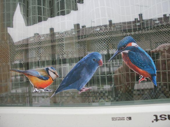 Цветни самозалепващи стикери на птички за украса на дом и детска стая