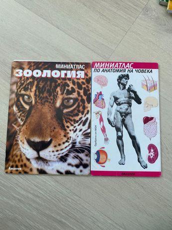 Миниатлас зоология/анатомия на човека