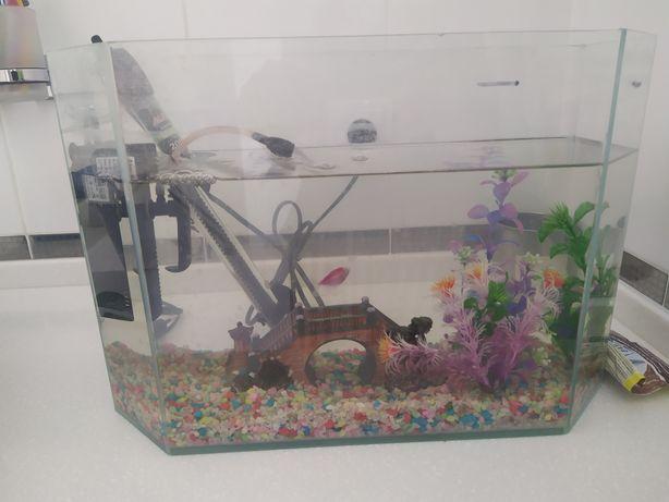 Аквариум с рыбкой,  имеется вся комплектация
