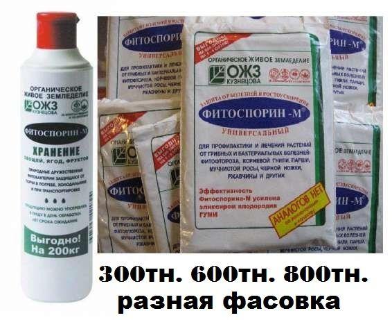 «Фитоспорин» – , защитит рассаду и ваши цветы против грибных болезней