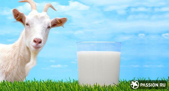 Согра Молоко козье
