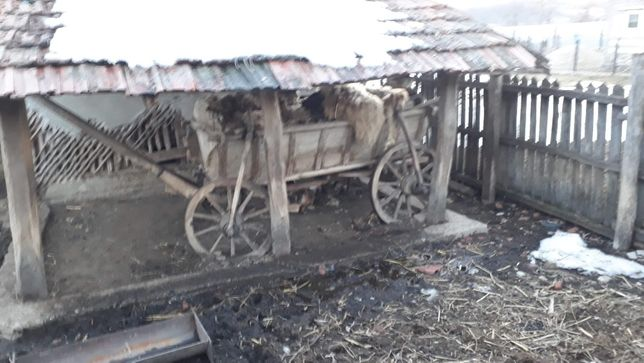 Vând car de lemn vechi