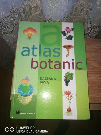 Atlas botanic