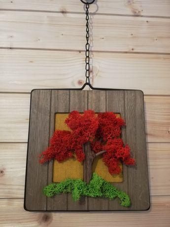 Tablou licheni naturali decorativi