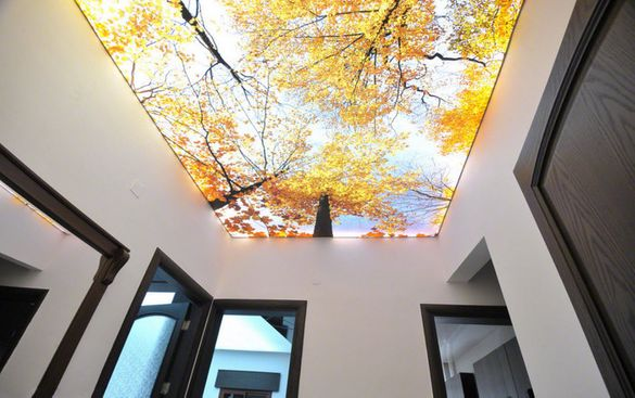 Опънати тавани
