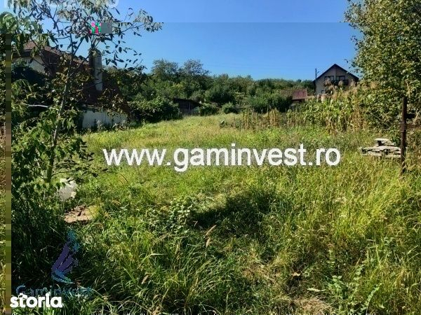 GAMINVEST-V2289 De vanzare teren cu cabana in Saldabagiu de Munte