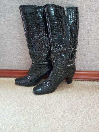Черные лакированные сапоги женские