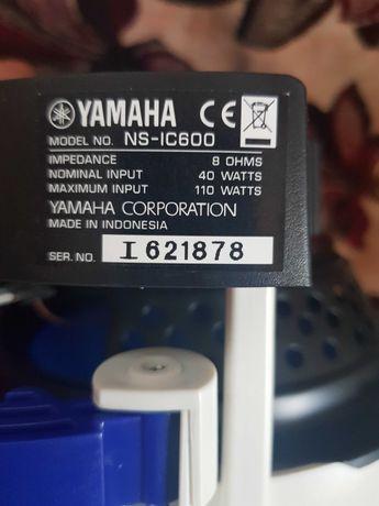 Boxe Yamaha