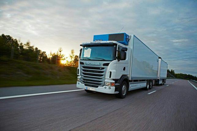 Transport marfa Frigorific express.Transport florii.Transport vin