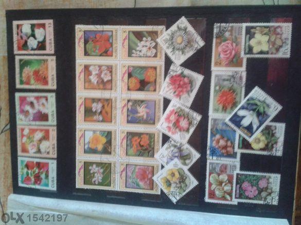 Албум с пощенски марки