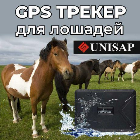 GPS Трекер для Лошадей, Батарейка до 100дней,ДОСТАВКА АКТОБЕ!