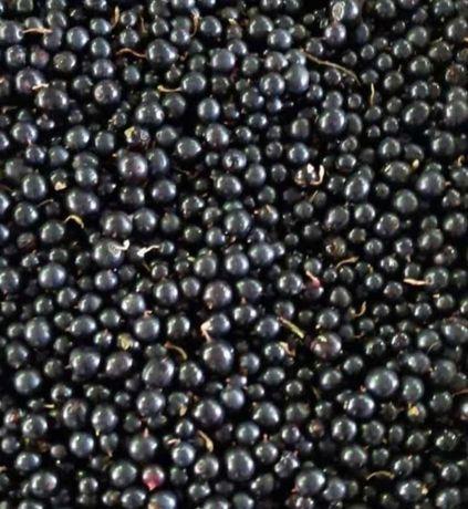 Доставка ягоды смородина клубника малина вишня смародина облепих рябин