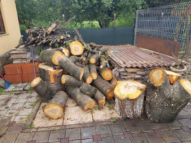 Vand  lemne de foc cires si brad