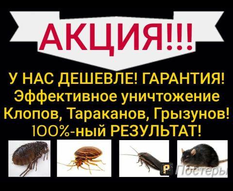 Уничтожение Клопов в Уральске! Мы одни из лучших! Нас Рекомендуют! СЭС