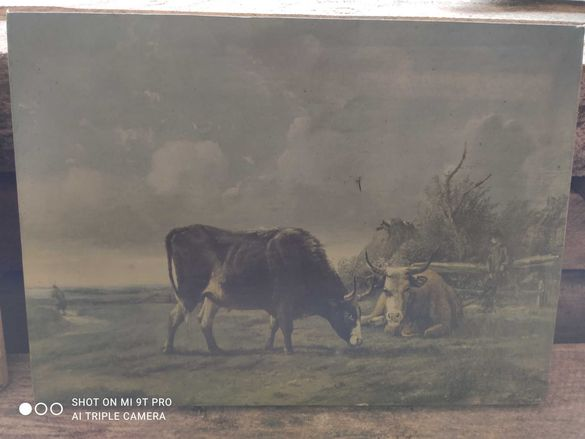 Стара рисувана картина
