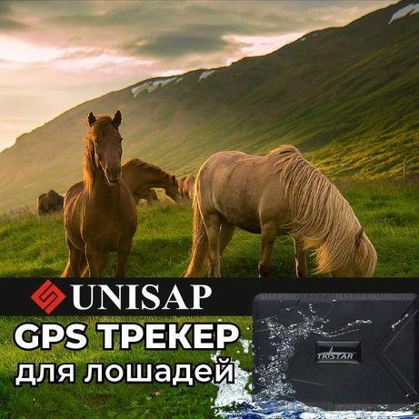 Сим/GPS Трекер/для Лошадей/Зарядка до 100дней/БАЛХАШ!