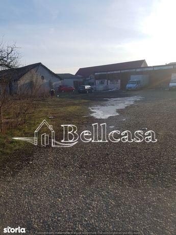 Teren, 7 000 m², Botosani (judet), Botosani
