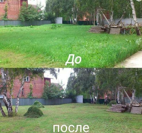 Косим траву во дворе. Качественно.Цена договорная.