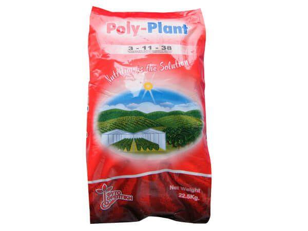 Ingrasamant Poly-Plant 3-11-38