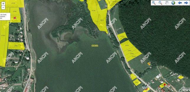 Teren intravilan (Urban land), zona Lac Pădureni , comuna Moacșa