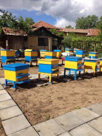 Пчелен мед. Кошери. Рамки, изградени и с основи.