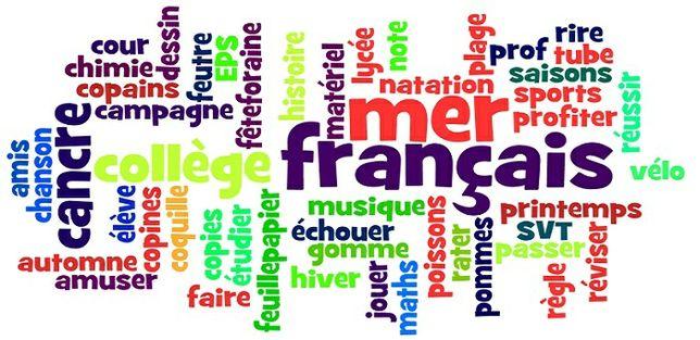 Meditatii limba Franceza, Limba Italiana,Limba Turca