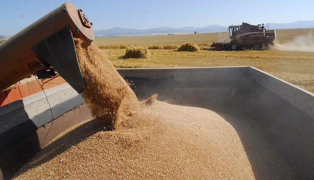 Зерно ячмень продаём в мешках