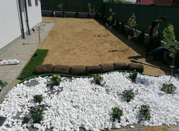 Piatra alba decorativă/ gazon  rulou Amnajam spati verzi etc