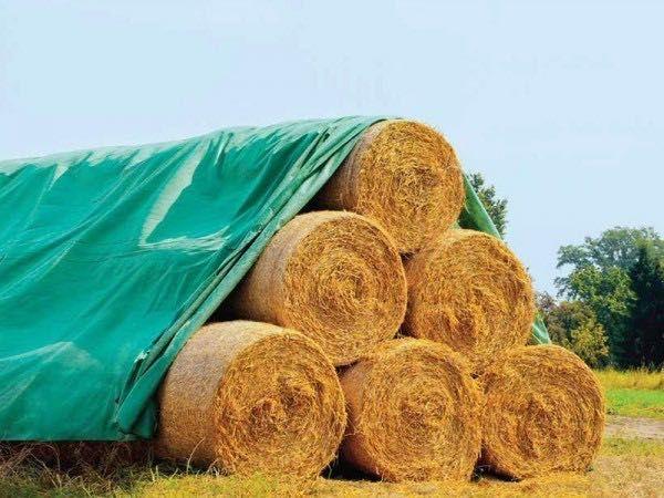 PRELATA impermeabilă - PROTECTIE BALOTI 9.8x12.5m=900 le; 9.8x25m=1700