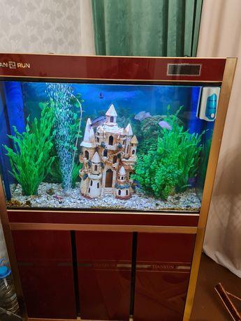 Продается аквариум  240 л