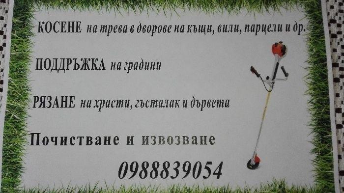 Косене на трева в градини,дворове,вили,парцели.Почистване и извозване. гр. Велико Търново - image 1