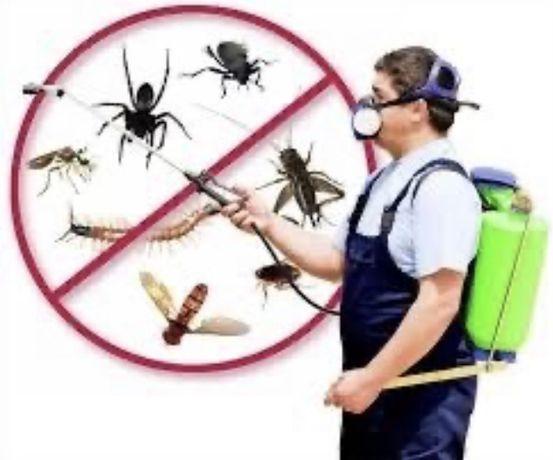 Дезинфекция от (клопов тараканов)гарантия 100%