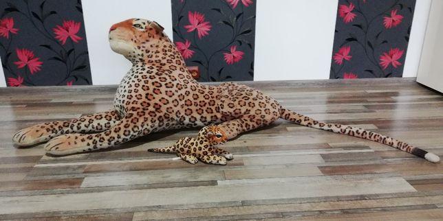 Jaguar de plus(mama si pui)