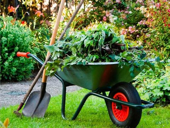 Почистване на дворове,косене на трева,рязане на дървета ВеликоТърново