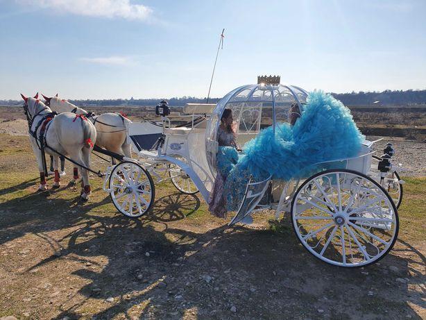 Trăsură  Cai  Caleasca  Nuntă  Evenimente