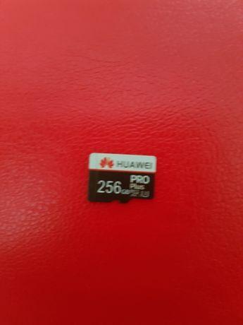 Card memorie 256 Gb