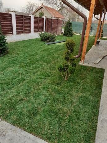 Amenajam grădini cu plante și gazon