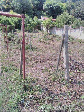 Косене -трева,храсти.Рязане на дървета.Извозване