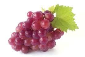 Poama de vin calitate maxima