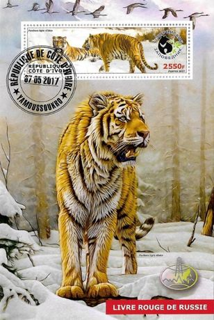 Super timbre colita stampilata Madagascar, animale, tigru