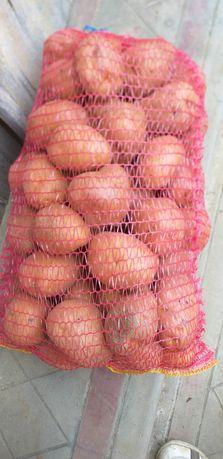 Cartofi de vanzare