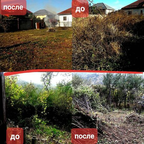 Чистка территорий от зарослей,уборка дворов.Покос травы. спил деревьев