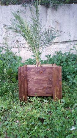 Дървени саксии (кашпи) за растения и сандъче за цветя